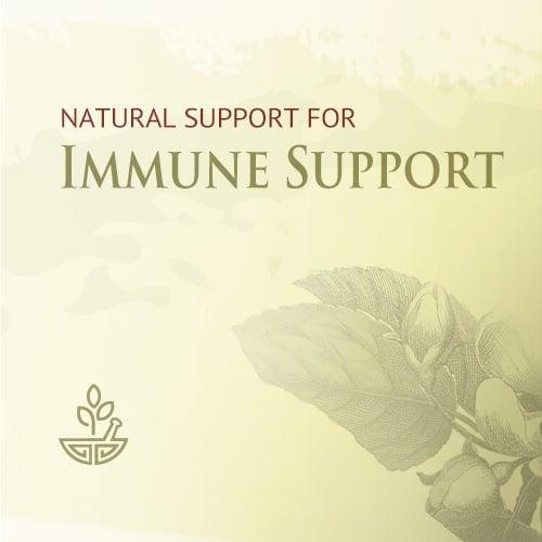 Immune Support