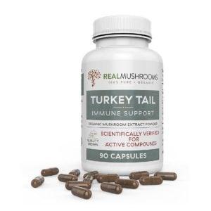 Turkey Tail Mushroom Capsules by Real Mushrooms